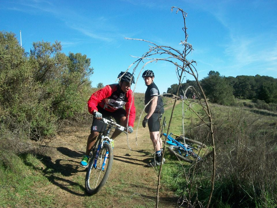 Mountain Bike Consultation
